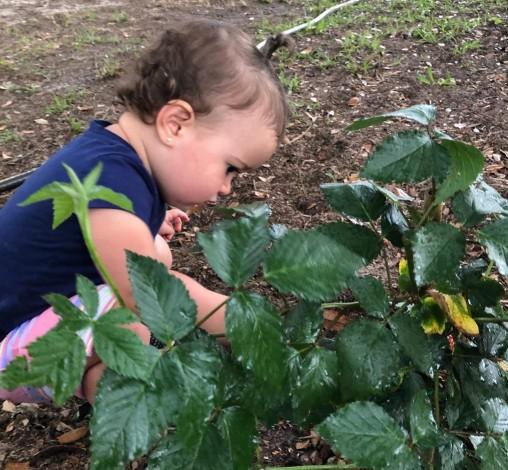 Infante observa planta en el patio