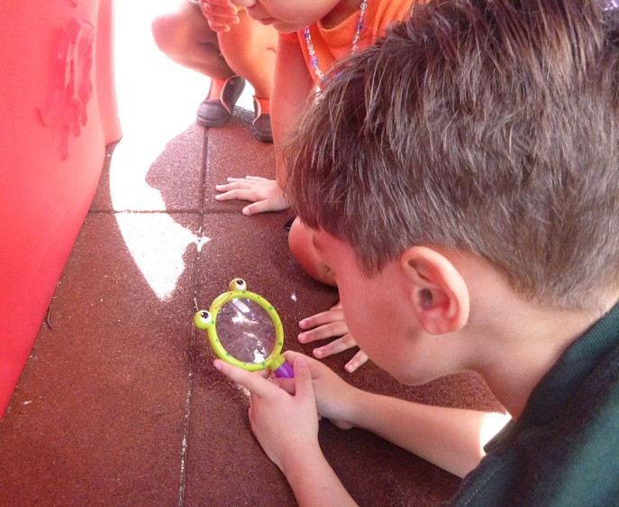 Grupo de niños observa un insecto con una lupa