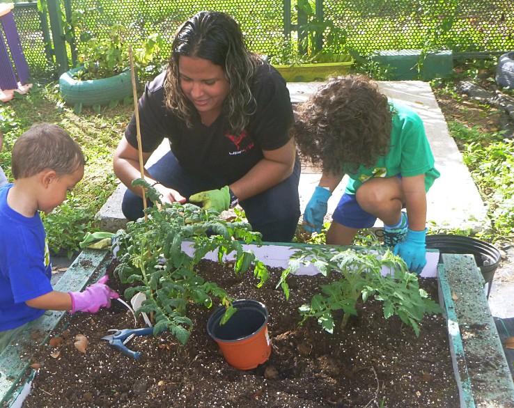 Maestra y niños trabajan en el huerto
