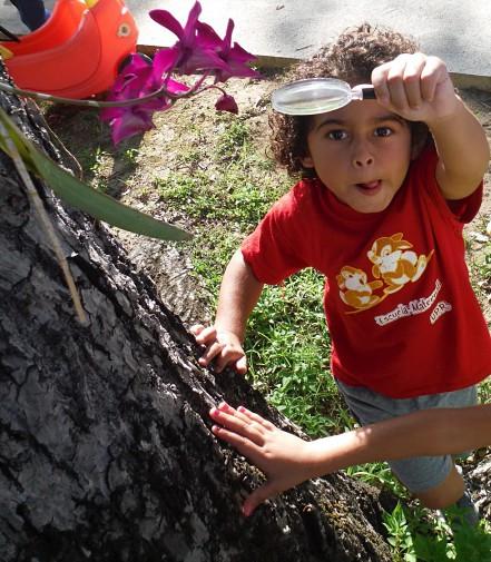 Niño observa unas flores en el patio